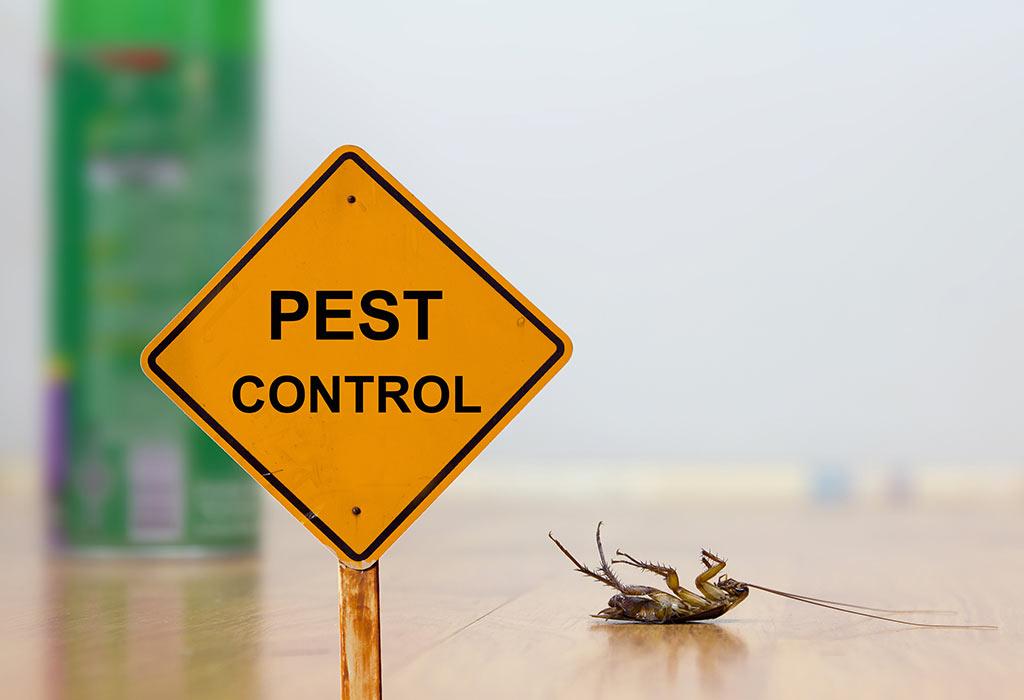 Pest Control TomsRiver